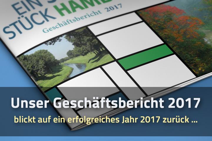 """""""Unser Geschäftsbericht 2017""""1"""